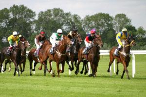 race-night-horses